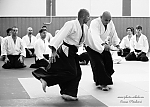 2017_photo-aikido_pankova-01444.jpg