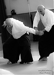 2017_photo-aikido_pankova-01471.jpg