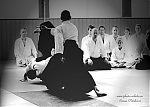 2017_photo-aikido_pankova-01551.jpg