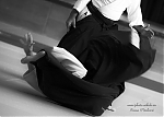 2017_photo-aikido_pankova-01762.jpg
