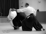 2017_photo-aikido_pankova-01837.jpg