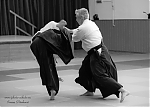2017_photo-aikido_pankova-01849.jpg