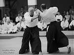 2017_photo-aikido_pankova-01872.jpg