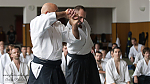 2017_photo-aikido_pankova-02254.jpg
